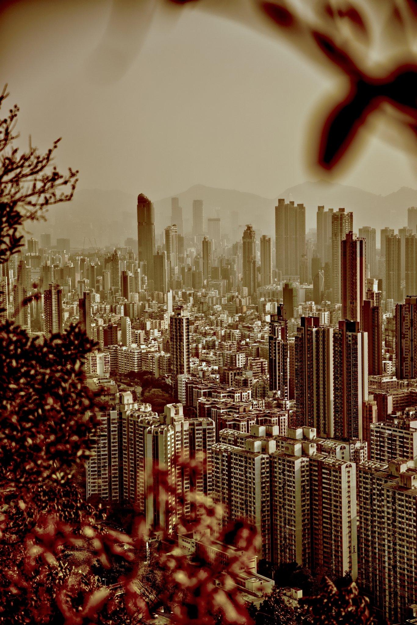 13. Cityscape
