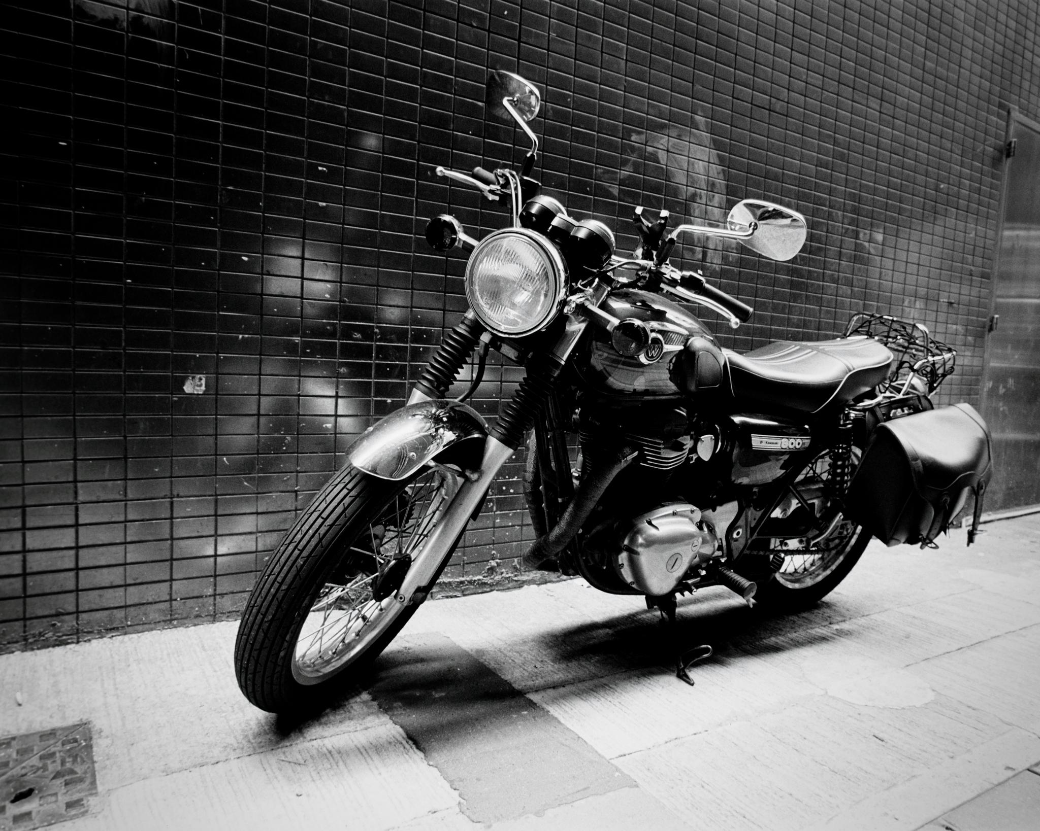 30. Alley Bike