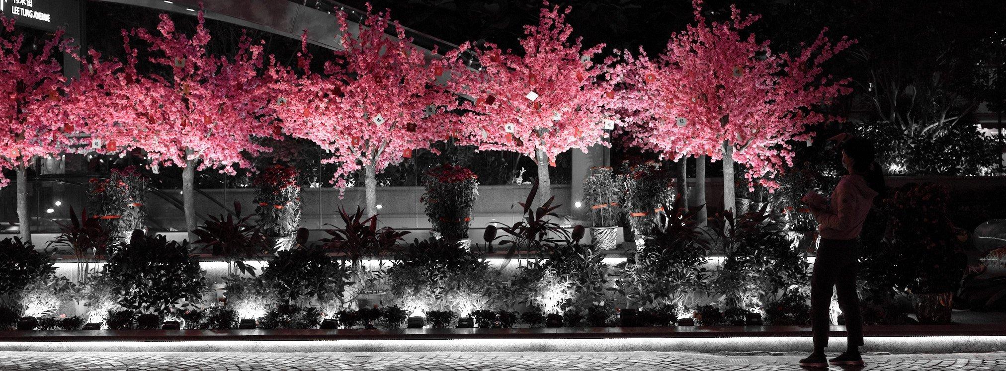 37. pink