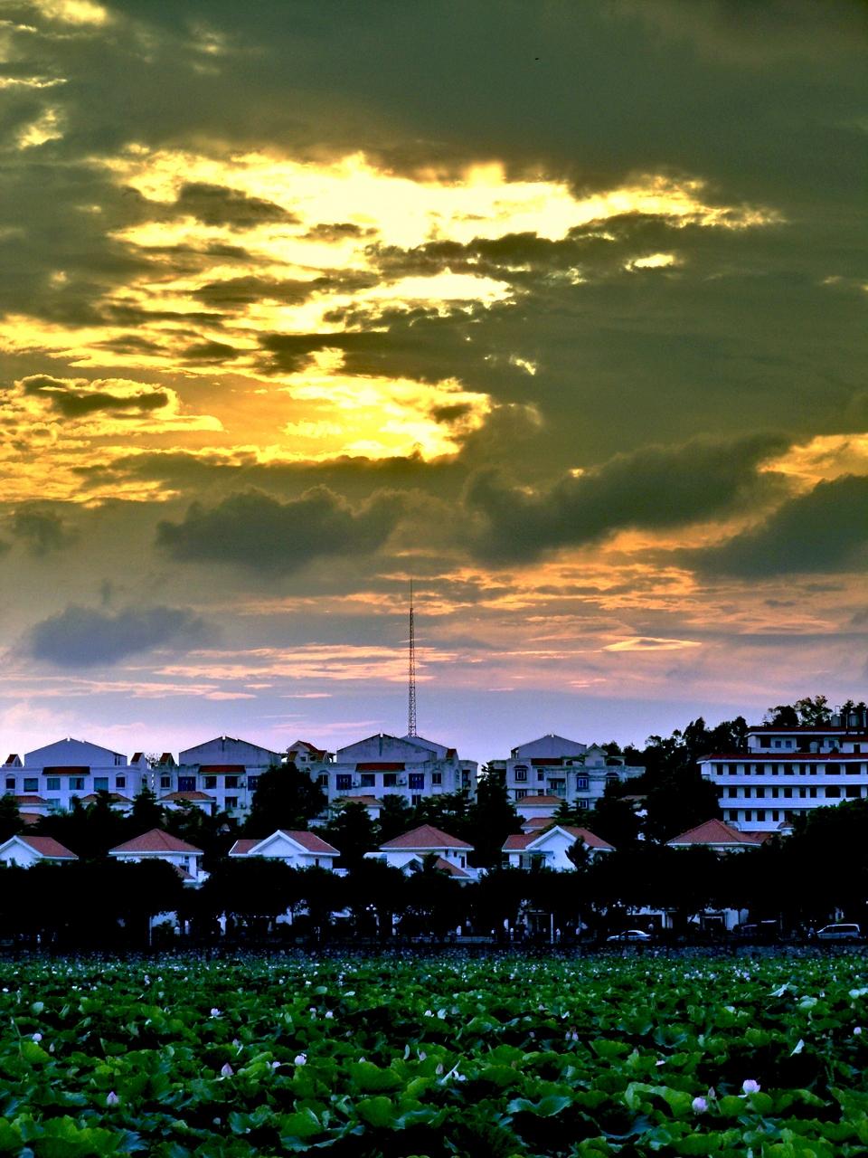 7. Dongguan